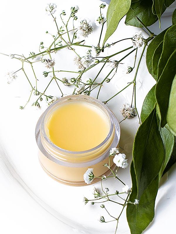 Jojoba and Tree Tea Lip Balm | Organic Lip Balm | Beauty Products